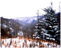 Восточно-Сахалинские горы
